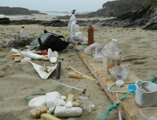 Siempre que vayas a surfear recoge algo de la playa; la filosofía del proyecto Surf and Clean