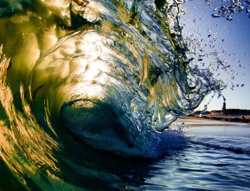 Surfea seguro con las licencias federativas 2021